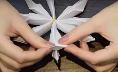 kuv-14 Объемная водяная лилия из бумаги для детей и цветы в той же технике своими руками. Как сделать своими руками кувшинки из бумаги