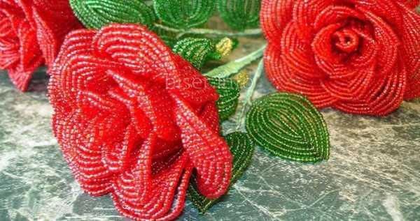 бисер для начинающих со схемами розы